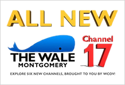 Channel 17 The WALE